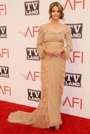 Actress Stana Katic in romantic - AFI Life Achievement Award Picture