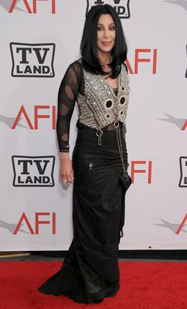 AFI Mike Nichols - Cher - AFI Life Achievement Award Picture