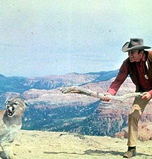 Matt tames the wild beast - Gunsmoke Picture
